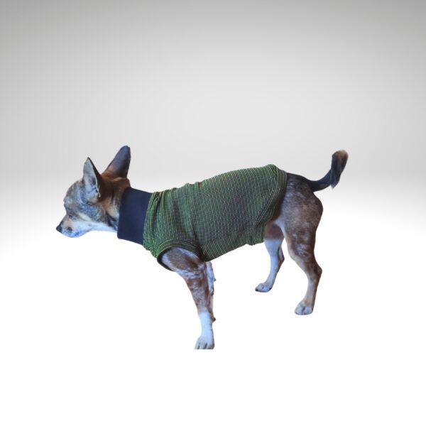 Camiseta verde antimicrobiana para perro en verano