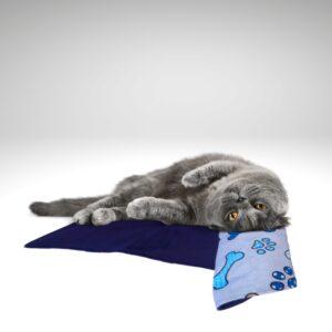 gato gris en manta azul anti ácaros y anti hongos